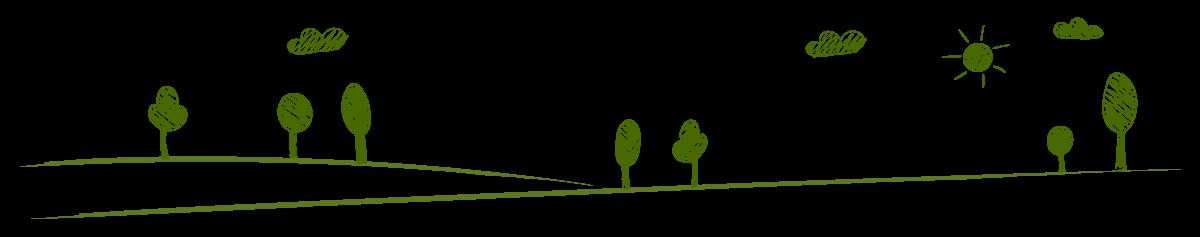 sfondo-sostenibilità