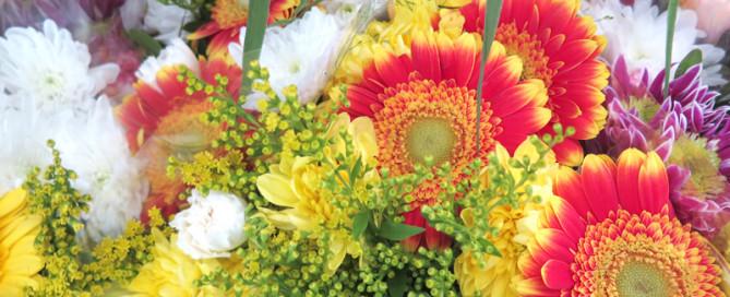 conservante-fiori