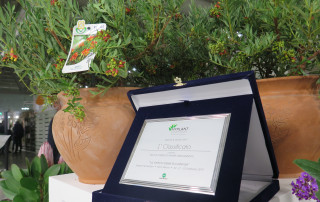 my-plant-1classificato-premio